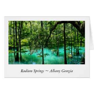 Radium Springs ~ Albany Georgia Card