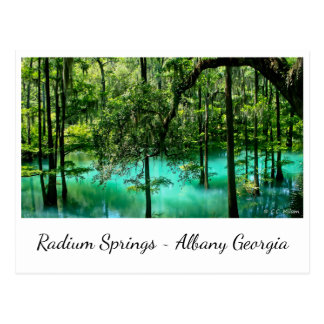 Radium Springs ~ Albany Georgia Postcard