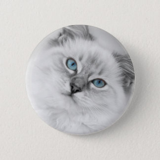 ragdoll button