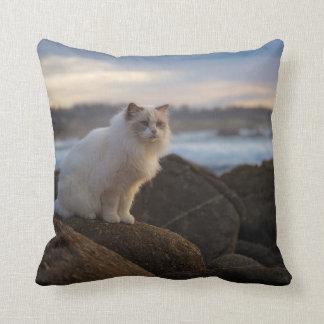 Ragdoll Cat At The Beach Throw Pillow