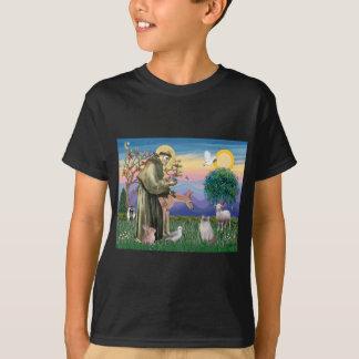 Ragdoll Cat (Blue Point) and Saint Francis T-Shirt