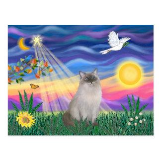 Ragdoll Cat (Blue Point) Postcard