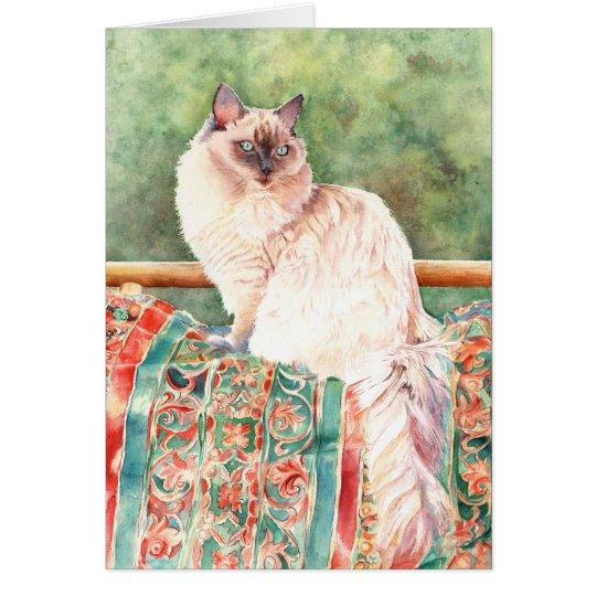 """""""Ragdoll"""" cat Card"""