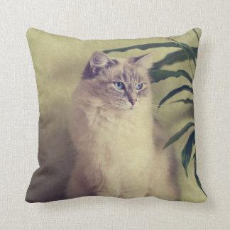 Ragdoll Cat Cushion