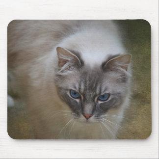 Ragdoll Cat Mousemat Mouse Pad