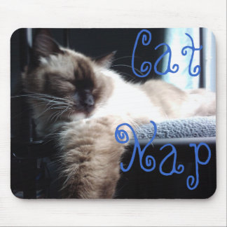 Ragdoll Cat Napping Mouse Pad
