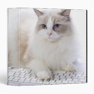 Ragdoll cat on computer keyboard 3 ring binder