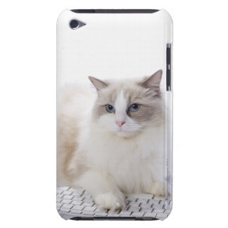 Ragdoll cat on computer keyboard barely there iPod case
