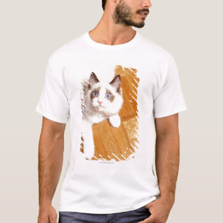 Ragdoll cat on floor, elevated view T-Shirt