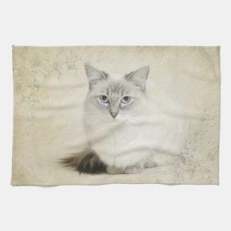 ragdoll cat towel