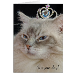 Ragdoll cat with jeweled crown card