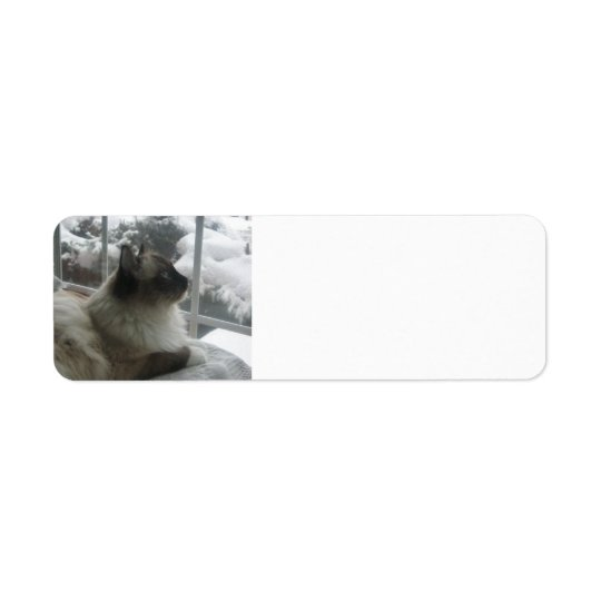 Ragdoll Himalayan Cat Kitty Snow Christmas Scene Return Address Label