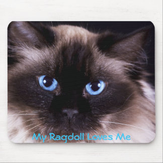 Ragdoll IPhone and IPad covers and Mouse Pad