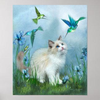 Ragdoll Kitty And Hummingbirds Art Poster/Print Poster