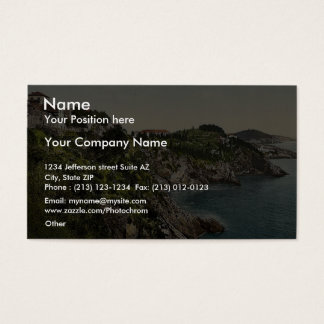 Vista business cards and business card templates zazzle for Business cards vista