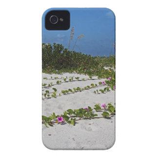Railroad Vines on Boca I iPhone 4 Case-Mate Case