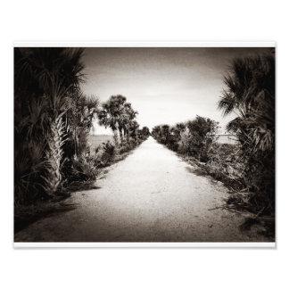 Rails To Trails (Black And White) Photo Print