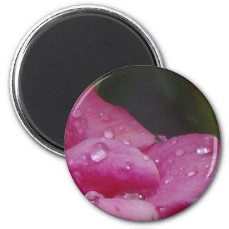 Rain Drop Flower Magnet