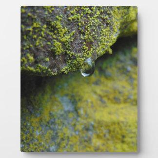Rain Drop Plaque