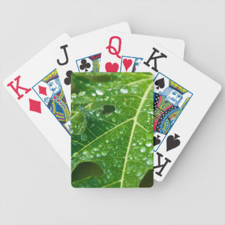 Rain Drops on Green Papaya Leaf Bicycle Playing Cards