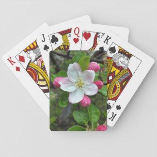 Rain drops on little flower poker deck
