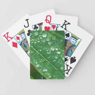 Rain Drops on Papaya Leaf Poker Deck