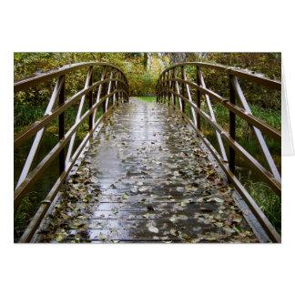 Rain Forest Bridge Card