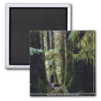 Rain forest, Tofino, British Columbia Magnet