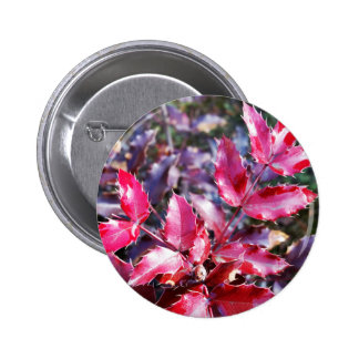 Rain on leaflets 2 inch round button