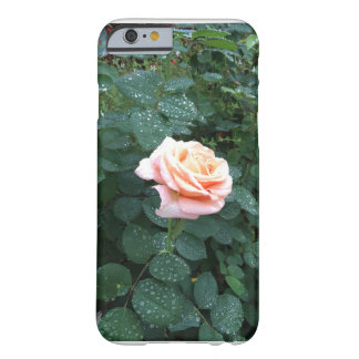 Rain on the Rose Barely There iPhone 6 Case