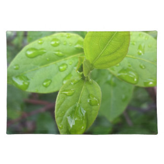 Rain over leaves placemat