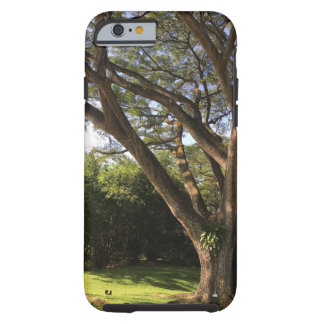 Rain Tree Tough iPhone 6 Case