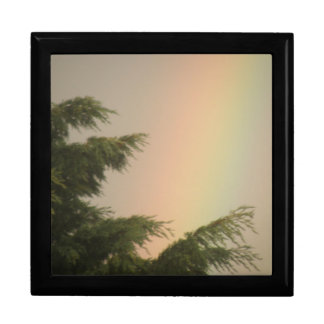 Rainbow and Trees Gift Box