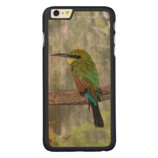 Rainbow bee-eater bird, Australia Carved Maple iPhone 6 Plus Case