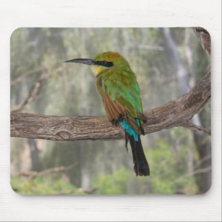 Rainbow bee-eater bird, Australia Mouse Pad