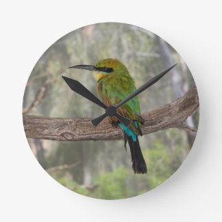 Rainbow bee-eater bird, Australia Wall Clock