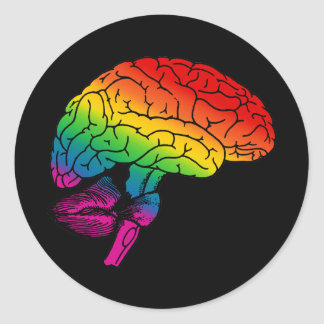 Rainbow Brain Round Sticker