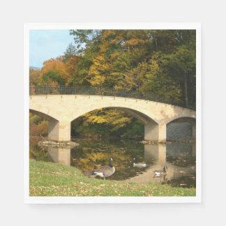 Rainbow Bridge in Fall at Grove City College Paper Napkin