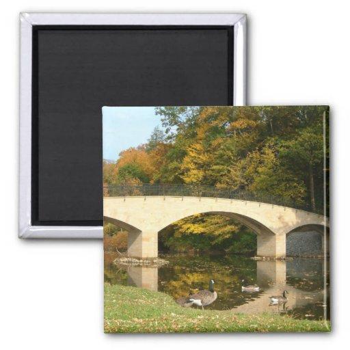 Rainbow Bridge in Fall Magnet