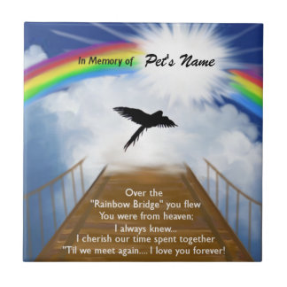 Rainbow Bridge Memorial Poem for Birds Tile