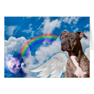 Rainbow Bridge Pet Sympathy Poem Card