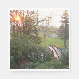 Rainbow Bridge Sunset at Grove City College Paper Napkins