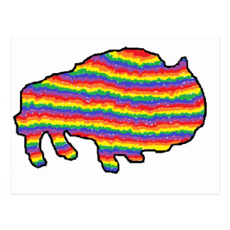 rainbow bruce postcard