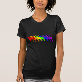 Rainbow BT Coonhound T-Shirt