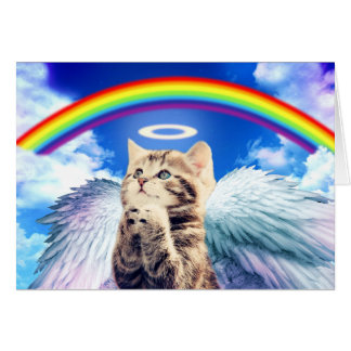 rainbow cat card