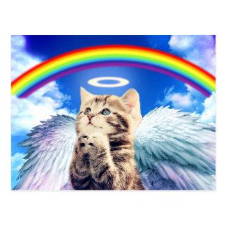 rainbow cat postcard