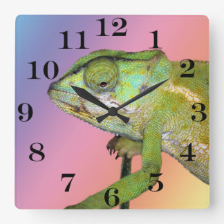 Rainbow chameleon square wall clock