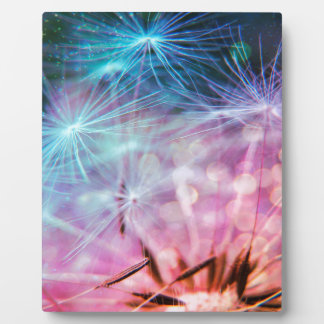 Rainbow Colored Dandelion Puffs Floating Plaque