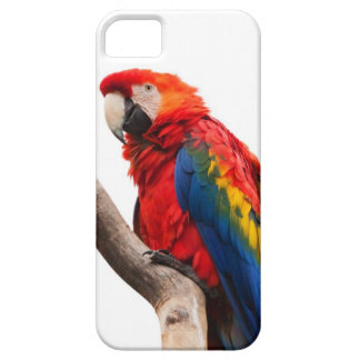 Rainbow Colored Macaw Parrot Image for  iPhone 5 Case For The iPhone 5