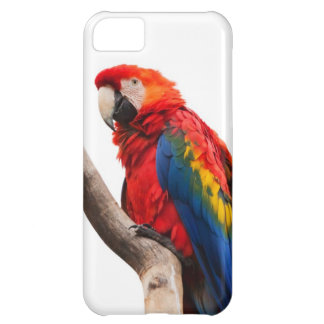 Rainbow Colored Macaw Parrot Image for iPhone 5 Cover For iPhone 5C